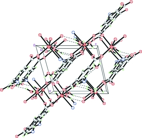 The three-dimensional network structure of the title compound, viewed along the b axis.