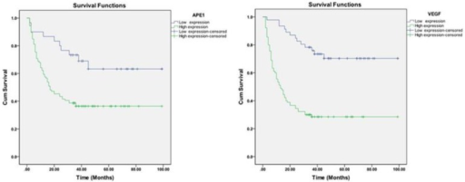 Kaplan-Meier analysis of the effect of APE1 and VEGF levels on survival.