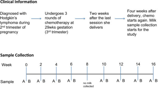 Summary of clinical data and sample collection. Milk samples were collected from a lactating woman undergoing chemotherapy for Hodgkin's lymphoma. Milk samples were collected every 2 weeks over a 4-month period. At each session milk was collected 15 to 30 minutes before (sample A) and after (sample B) chemotherapy. The duration of chemotherapy treatment was 2 hours. No milk was collected at week 8 due to scheduling conflicts.