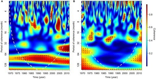 Wavelet coherence between (A) Buruli ulcer incidences per 100 000 people and the rainfall trend obtained from SSA. (B) Buruli ulcer incidences per 100 000 people and ENSO. The colors are coded from dark blue to dark red with dark blue representing low coherence through to high coherence with dark red. The solid black lines around areas of red show the α=5% significance levels computed based on 2000 Monte Carlo randomizations. The dotted white lines represent the cone of influence; outside this area, coherence is not considered as it may be influenced by edge effects. The black arrows represent the phase analysis and adhere to the following pattern: arrows pointing to the right mean that rainfall and cases are in phase, arrows pointing to the left mean that they are in antiphase, arrows pointing up mean that cases lead rainfall and arrows pointing down mean that rainfall leads cases.
