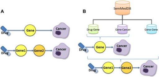(A) Two pathway schemas are utilized. The first connects a drug–gene predication with a gene–cancer predication and the second connects a drug–gene predication to a gene–gene predication and then the object gene of the gene–gene predication to a gene–cancer predication. (B) Drug–gene, gene–cancer, and gene–gene predications are all retrieved from SemMedDB. While all three types are used for the Drug→Gene1→Gene2→Cancer pathway, only the drug–gene and gene–cancer predications are used for the Drug→Gene→Cancer pathway.