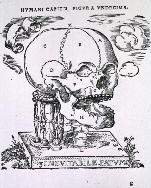 <p>View from right of human skull raised by vertebrae on a base on which also sits an hourglass. Carved into the base is the line: Inevitabile Fatum.</p>