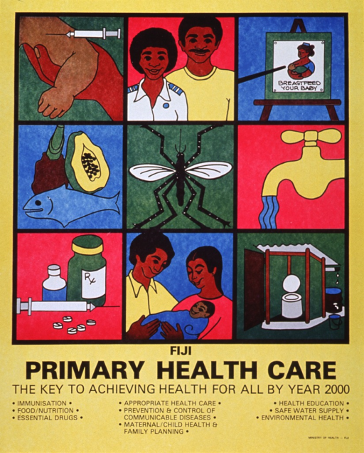 <p>Bright yellow poster with black lettering.  Upper portion of poster dominated by a three-by-three array of illustrations.  The illustrations depict the public health issues enumerated in the caption, hence they show an arm being vaccinated, a man visiting a medical officer, a health education class, quality food, a mosquito, clean water flowing from a faucet, necessary medications, a healthy baby, and a pit toilet.  Title appears below illustrations, caption appears below title.</p>