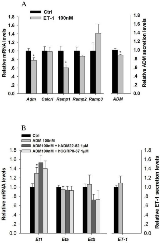 Interactions Of ADM And ET 1 In Large Antral Follicles Reduced