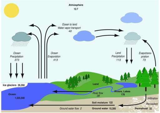Schematic of the global hydrologic cycle the reservoir open i schematic of the global hydrologic cycle the reservoirs in 103 km3 are shown ccuart Image collections