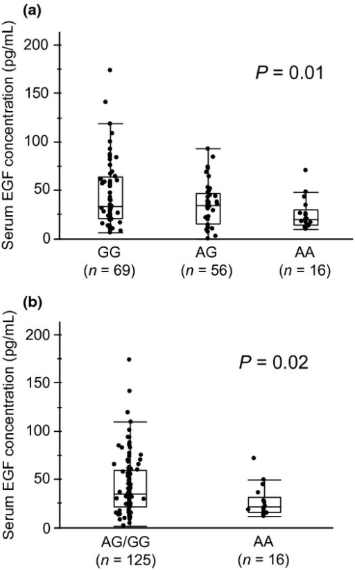 Comparisons of serum epidermal growth factor (EGF) concentration. (a) There was a significant difference in serum EGF concentration among the three genotypes (P = 0.01). (b) The AA group had a significantly lower serum EGF concentration than the AG/GG group (P = 0.02).