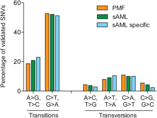 Spectrum of transition and transversion mutations per sampleThe percentage of somatic single nucleotide variants (SNVs) in the PMF, sAML, or specific for the sAML sample are categorized by transition and transversion mutation types.