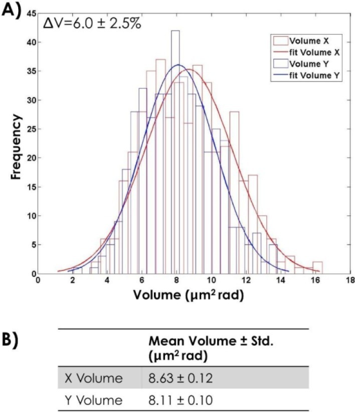 (A) Histogram of the measured head volume for both 500 X- and 500 Y-bearing sperm cells and the correspondent fit; (B) Mean value of the head volume obtained by the fit.