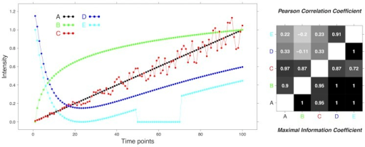 Example .PCC versus MIC in a synthetic example with five time series A–E on 100 time points (left) and the corresponding PCC values (right panel, top-left triangle) and MIC values (right panel, bottom-left triangle) for all pairs of time series.