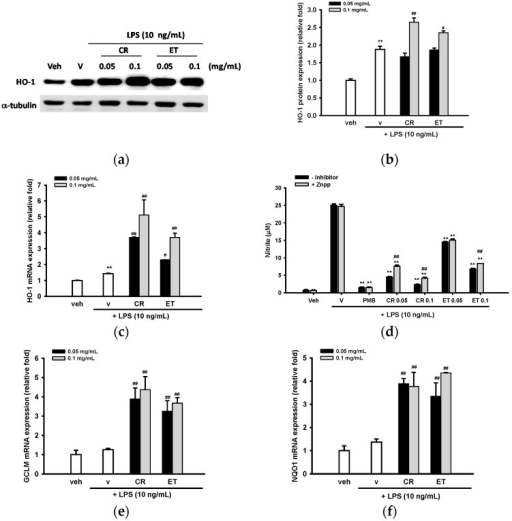 Induction of Nrf2 target gene expression by ethanol extracts of C. rutidosperma (CR) and E. thymifolia (ET). (a) BV2 cells were cultured with indicated reagent for 16 h and level of HO-1 expression was determined by Western blotting; (b) Band intensities were quantified by ImageJ software and indicated as relative fold of HO-1/α-tubulin; (c,e,f) HO-1, GCLM and NQO-1 mRNA expression levels were determined at 4 h after LPS treatment by RT-Q-PCR. Data are represented as the mean ± SD (n = 3). Statistical differences are presented ** p < 0.01 compared with the vehicle control (without LPS) and # p < 0.05; ## p < 0.01 compared with the LPS-treated vehicle; (d) BV2 cells were pre-treated with Znpp (5 μM) for 30 min, followed by PMB (10 μg/mL), CR or ET (0.05 and 0.1 mg/mL) treatment for further 30 min, prior to LPS (10 ng/mL) challenge for 20 h. NO production was determined by the Griess reagent. Data are represented as the mean ± SD (n = 3). Statistical differences are presented ** p < 0.01 compared with the LPS-treated vehicle and ## p < 0.01 compared with relative Znpp-untreated group.