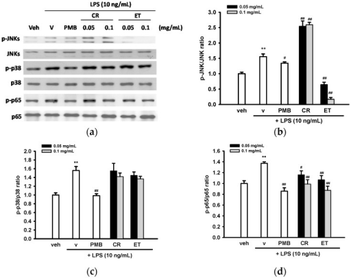 Effects of ethanol extracts of C. rutidosperma (CR) and E. thymifolia (ET) on phosphorylation of JNK, p38 MAPK and p65 in BV2 cells. (a) BV2 cells were pre-treated with the indicated reagent for 30 min and then stimulated for 30 min with LPS (10 ng/mL). Western blots were performed using the appropriate antibodies. Representative blots from three independent experiments are shown; (b–d) Densitometry is presented as the mean ± SD of three independent experiments. Statistical differences are presented ** p < 0.01 compared with the vehicle control (without LPS) and # p < 0.05; ## p < 0.01 compared with the LPS-treated vehicle.
