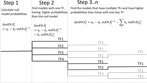 Workflow of the heuristic model search algorithm.On the first step the marginal likelihood of the  model is calculated. Then each TF is evaluated as a variable independently and only TFs whose marginal likelihood is higher than the  model's are further expanded. The highest marginal likelihood of the single TF models is selected as a threshold or bound to evaluate the nested models with two TFs.