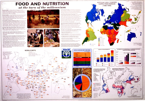 <p>Predominantly white poster with black lettering.  Title in upper left corner.  Text below title describes status of world food production and distribution and nutritional diseases in the late 20th century.  Visual images include color photo reproductions showing people harvesting grain and buying food in markets.  Additional images include maps and graphs depicting the types of food consumed, total daily energy supply per person, and areas subject to particular micronutrient deficiencies.  Publisher information in lower right corner.</p>