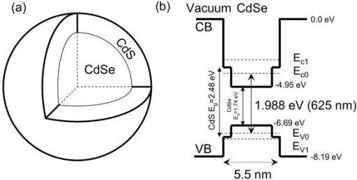 figure 7 optical characterization of colloidal cdse quantum dots in endothelial progenitor cells