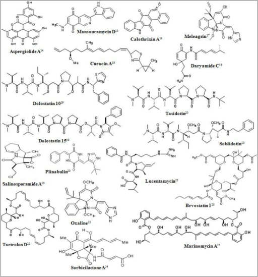 Chemical structures of some marine derived antitumor compounds. The corresponding references have been superscripted after the compound name [11–25].