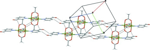Perspective view of a fragment of the two-dimensional supramolecular network with the C—H···O hydrogen bonds shown as dashed lines.