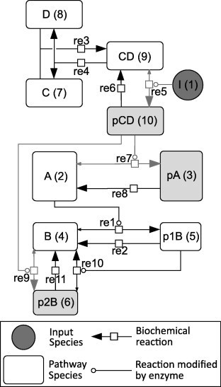 The hypothetical network constructed for in silico model validation. Network is illustrated in accordance for the Systems Biology Graphical Notation (SBGN) [45]. (A, B) and (C, D) Belong to two different pathways which cross-talk when I (circular species) is added. This activates shaded reactions and enables formation of shaded species. The numbers in parentheses next to the species refer to their indices in the model equations in the computational program (Doc S5).