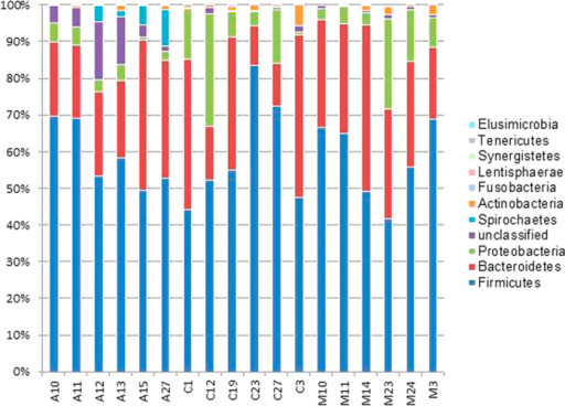 Bacterial phyla distribution inferred based on 16S-based pyrosequencing.The distribution was obtained through sub-sampling of 2503 sequences (the lowest obtained sequences in a sample) across all samples.