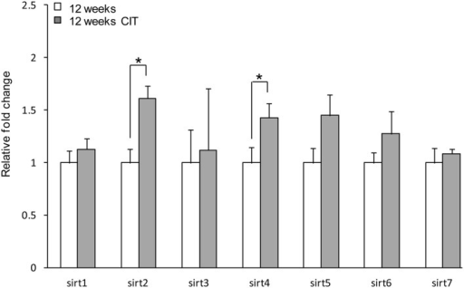 Chronic citalopram (CIT) treatment up-regulates sirt2 and sirt4 in the preoptic area. CIT was administered at 10 mg/kg/bodyweight daily in male mice for a duration of 4 weeks leading to relative mRNA changes in sirt2 and sirt4 expression in the POA. There was no difference in sirt3, sirt5, sirt6, or sirt7 mRNA levels in the POA after CIT treatment. Data are expressed as mean ± SEM. Statistical analysis was carried out using one-way analysis of variance (12 weeks control, n = 9; 12 weeks CIT, n = 9). *P < 0.05 vs. control.