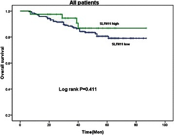 Log rank survival analysis showed no difference between patients with high and low SLFN11 expressing tumors in the cohort as a whole (Log rank P = 0.411)