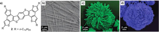 (a) Chemical structure of oligoarene derivative 2 containing linear alkyl chains. False-color SEM images of different nanostructures of 2: microbelts self-assembled from 1,4-dioxane (b), flower-A formed from THF (c) and flower-B assembled from n-decane (d). Reprinted with permission from L Wang et al 2009 Langmuir25 1306, © 2009 American Chemical Society.