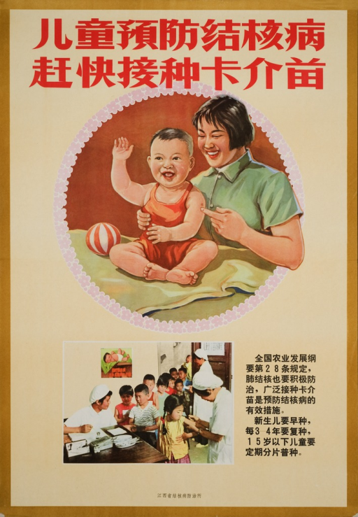 <p>Predominant image is a circle with a baby sitting on a table and his mother standing next to him with one hand pointing at his BCG vaccine. At the bottom half of the poster is a picture of children in queue for the vaccine in a clinic.  Captions emphasize the importance of BCG vaccines for children against TB, which is stipulated by law.</p>