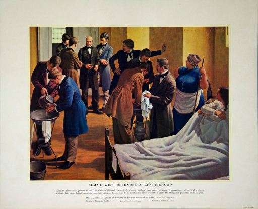 <p>Ignaz P. Semmelweis proved, in 1847, in Vienna's General Hospital, that many mothers' lives could be saved if physicians and medical students washed their hands before examining obstetric patients. Resentment both by students and by superiors drove the Hungarian physician from his post.</p>