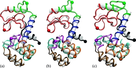 Locations and dynamics of the eight local features (n = 8) in T4L during the MD simulation. (a) Initial structure of the simulation (t = 0 ns), (b) t = 4 ns, and (c) t = 8.25 ns. The local dynamic domains are colored as those in Figure 3. Seed atoms are shown as spheres, and the protein in is white cartoon representation. Molecular graphics renderings were created with VMD.(36)