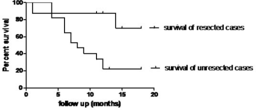 Overall survival curves in both resected and unresected cases.