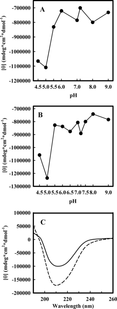 Secondary structure of the MG state. Wild-type (A) and R248Q p53C (B), at 10 μm, were incubated in solutions with different pH values, and the molar ellipticity at 218 nm was collected. C, circular dichroism spectra of wt p53C at pH 5.0 (dotted line) and pH 7.2 (solid line).