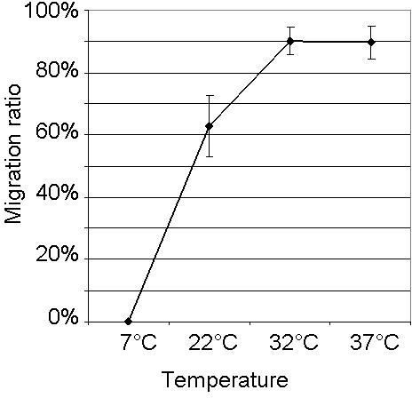 Effect of temperature on the migration ratio of L3 after ≥ 12h of incubation. Each point represents the mean ± SD (n=6). Larvae were incubated in PERL chambers at 7°C, 22°C, 32°C, and 37°C, respectively.