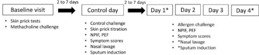 Study design. The protocol was divided into 3 different parts: a baseline visit, a control day (nasal challenge with 0.9% saline) and 4 consecutive days of nasal allergen challenge (days 1-4).
