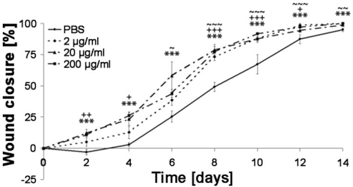 Efficacy in wound healing of IDR-1018 peptide in a murine dose-response model.Peptides were administered every 48 hours with the indicated concentrations of IDR-1018 or PBS (negative control). Re-epithelialization/wound closure was measured every second day. Standard deviation was assessed as SEM (Superscript symbols *, +, and ∼ represent 15 µl doses of 3, 0.3 and 0.03 µg respectively; *,+,∼  = p<0.05; **,++,∼∼  = p<0.01; ***,+++,∼∼∼  = p<0.005 compared to vehicle control).