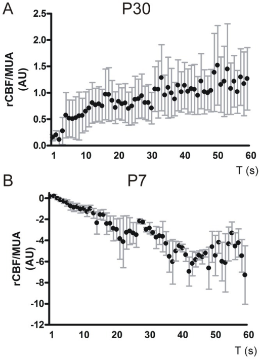 Correlation of rCBF/MUA ratio and stimulation time.rCBF values were correlated to corresponding MUA and were plotted against stimulation time in arbitrary units (AU). rCBF per MUA increases over stimulation in P30 mice and is significantly positively correlated with stimulation duration (A). In contrast rCBF decreased per MUA over stimulation time in P7 mice. Here the correlation coefficient was negatively correlated (B). Error bars indicate + SEM.