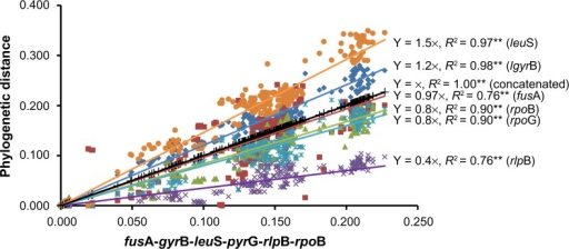 Least square tendency lines identified leuS as the most discriminating gene by correlation of phylogenetic distances between Pantoea strains as indicated by Mulet et al.19