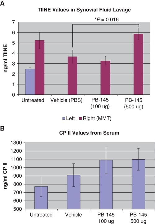 Biomarkers of cartilage turnover. (A) Synovial fluid lavage levels of type II collagen neoepitope (TIINE). High-dose PB-145 (500 ug) was different than vehicle based on a 2-sided t test for independent samples. (B) Serum levels of collagen II C-propeptide (CPII). See Methods section for details.