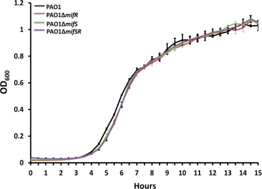 Growth curve analysis in the presence to methionine.Growth curves of P. aeruginosa wild-type PAO1 and mifSR mutants in M9 minimal media supplemented with glucose (30 mM) and methionine (5 mM) as carbon and nitrogen source.