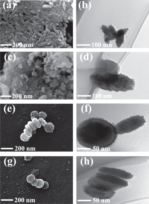 SEM and TEM analysis of samples synthesized at different temperatures: (a) and (b) 140 °C, nanospindle; (c) and (d) 160 °C, amorphous nanoparticle; (e) and (f) 180 °C, pseudo-nanodisk; (g) and (h) 200 °C, uniform nanodisk.