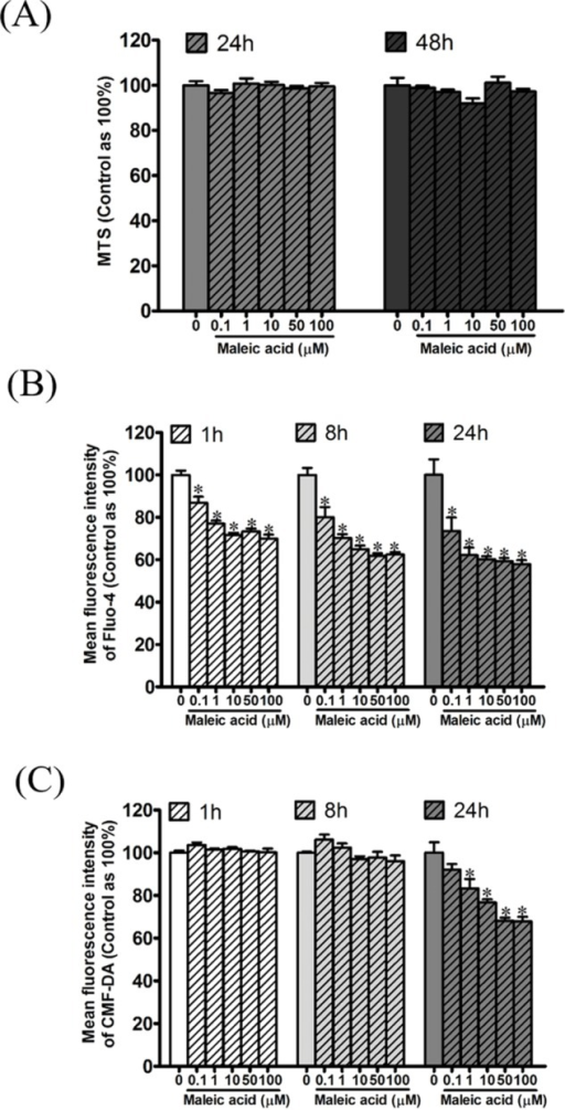 Attenuation of cellular calcium and thiol level by maleic acid in SH-SY5Y cells.SH-SY5Y cells were seeded in a 96-well plate overnight and then exposed to maleic acid (0.1–100 μM). (A) Cell viability was evaluated by MTS and the absorbance was read at wavelength 490 nm by a microplate reader. Intracellular calcium and thiols of SH-SY5Y cells were measured by Fluo-4 AM (B) and CMF-DA (C), respectively. The change in fluorescence was analyzed by a microplate reader. The data were expressed as the mean ± SE of quadruplicate cultures. Results were representative of three independent experiments. *p < 0.05 was significant compared to the control group (cell alone without maleic acid).