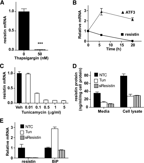 Endoplasmic reticulum stress activation downregulates resistin expression in vitro in 3T3-L1 adipocytes. A: Downregulation of resistin mRNA levels following treatment with 50 nmol/l thapsigargin for 24 h. B: Time course of resistin and ATF3 mRNA gene expression upon induction of ER stress with 5 μg/ml tunicamycin, presented as fold change over the levels at 0 h. C: Resistin gene expression in response to vehicle and various doses of tunicamycin for 24 h, presented as fold change over vehicle alone. D: Resistin protein concentration in tissue culture media and whole cell lysates presented as nanogram per milliliter per milligram of total cell protein. Mature adipocytes were electroporated with resistin (siResistin) or nontarget control (NTC) siRNA oligos and treated with vehicle or 5 μg/ml tunicamycin. Twenty-four hours later the cells were washed and treated with vehicle or 5 μg/m tunicamycin for 24 h and resistin protein levels were assayed with ELISA. Data are mean ± SE, n = 3. E: Gene expression validation that siResistin and tunicamycin treatment reduced resistin mRNA to similar levels, and only tunicamycin induced markers of ER stress such as BiP. Data in A–C and E were normalized to the house-keeping gene Arbp/36b4 and are shown as mean ± SE, n = 3. ***P < 0.001.