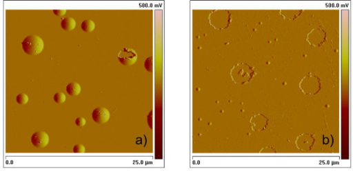AFM amplitude image of (a) a-Si and (b) a-Ge single layer after annealing at 350°C for 4 h. H flow rate 1.5 ml/min. In (a) bumps (close bubbles with H still inside) are predominant (only one is broken). In (b) large craters, i.e. exploded bumps with escape of H, are by far predominant. Very tiny bumps are also present.