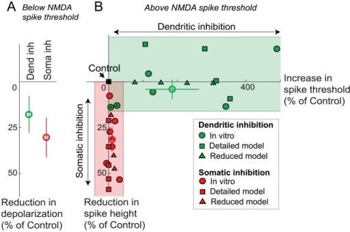 Summary of location effects of inhibition.(A) % reduction in somatic depolarization caused by dendritic vs. somatic inhibition at stimulus levels subthreshold for NMDA spike initiation, averaged over subthreshold part of i/o curves like those shown in Figure 1 B,D. Bars shown are standard errors. (B) Scatter plot showing changes in NMDA spike threshold (x-axis) and height (y-axis) in response to dendritic (green symbols) and somatic (red symbols) inhibition, expressed as joint % change in spike height and threshold relative to no-inhibition control (black square at origin). Peak conductance for dendritic inhibition cases shown here was 10, 20, 30, and 40 nS, while that for somatic inhibition was 30, 60, 90, 120 and 150 nS. Each excitatory synapse in this experiment had 6 nS peak AMPA conductance. Excitatory synapses with 1.5 nS peak AMPA conductance with similar distribution of density along the dendrite gave similar results. The figure includes data from in vitro experiments (circles), detailed compartmental model (squares) and the reduced (2-compartment) steady state model (triangles). Open circles show the means of the respective in vitro data. Green and red shaded regions highlight the predominance of threshold elevation in cases of dendritic inhibition, and height suppression in cases of somatic inhibition.