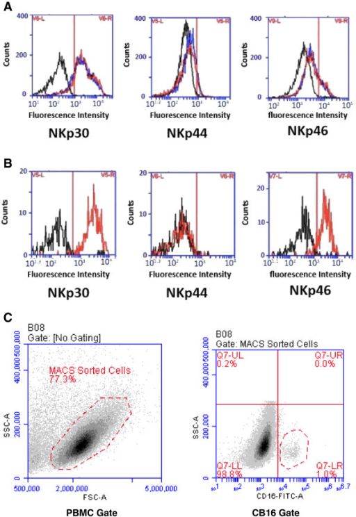 Unaltered expression patterns of the NCRs NKp30, NKp44 and NKp46 on enriched NKs from the patient at diagnosis, in remission and the healthy twin. (A) Expression pattern of NCRs on enriched NKs from the patient in remission (red) and the healthy twin (blue) compared with cells stained with an isotype control mAb (black). (B) To analyze NCR expression on enriched NKs from the patient at diagnosis, an additional sorting step for CD16 positive cells was performed to focus the analysis on the small subpopulation of NKs. NKs from the patient at diagnosis (red) are compared with cells stained with an isotype control mAb (black). (C) Gates chosen to generate data shown in panels A) and B). Left: gate chosen to identify MACS-sorted cells (negative selection for NK cells). Right: additional gate used for identification of the CD16 pos subset (lower right quadrant) of the MACS sorted cells from the patient sample obtained at diagnosis (Methods).