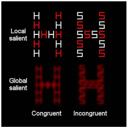 Example of the compound letters that were used in the present study incorporating global-more-salient and local-more-salient displays. The levels of each stimulus could be congruent (where local and global letters matched) or incongruent (where local and global letters differed).