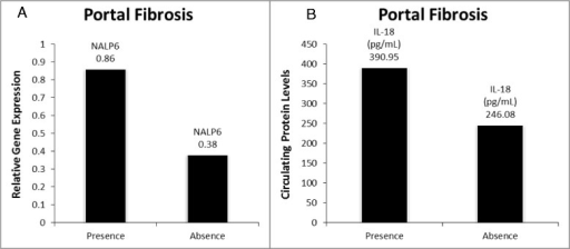 Significantly altered targets in presence of portal fibrosis vs absence of portal fibrosis. A.) NALP6 gene expression; B.) Circulating IL18 levels.