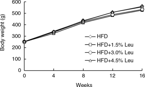 Body weights of rats in the four groups during the experimental period (n=12 for each group). HFD, high-food diet; Leu, leucine.