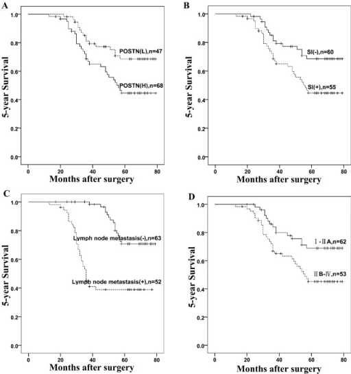 Kaplan-Meier analysis of five-year survival rates in 115 colorectal cancer patients according to (A) POSTN expression (p = 0.022); (B) Serosal invasion (SI) (p < 0.001); (C) Lymph nodes metastasis (p < 0.001); and (D) TNM stage (p < 0.001). Vertical bars represent censored patients.