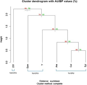 Dendrogram of the hierarchical analysis of the T. cruzi strains' predicted ploidy. The hierarchical clustering analysis based on Euclidian distances of the predicted ploidy of each chromosome from the T. cruzi Arequipa, Colombiana, Sylvio, Esmeraldo, Y and 231 strains was performed using the Pvclust package and the R software platform. Two bootstrap resampling methods were used to assess the uncertainty in the hierarchical cluster analysis: the approximately unbiased (au) in red, and the bootstrap probability (bp) in green