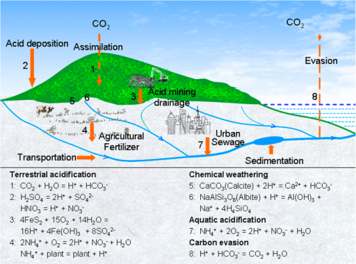 Graphical abstract illustrating the influence of anthropogenic acid loadings on chemical weathering and inorganic carbon processes.Calcite and albite exemplify carbonate and silicate minerals, respectively. This figure was drawn by software Adobe Photoshop 7.0.