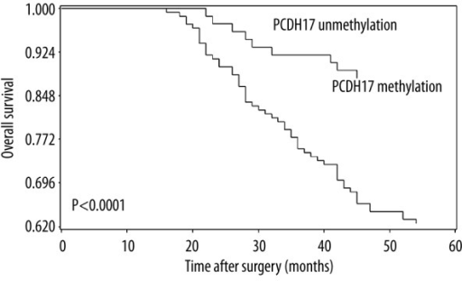 Correlation between PCDH17 methylation and 5-year overall survival in ccRCC patients. Patients with PCDH17 methylation showed significantly shorter 5-year overall survival than patients without (log-rank test, P < 0.0001).